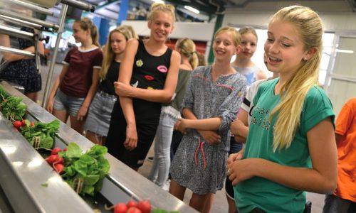 Leerlingen op Het Groene Lyceum
