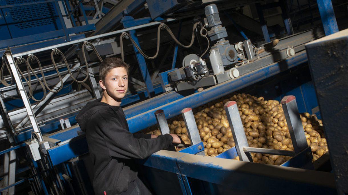 Student Agro staat bij aardappelrooier
