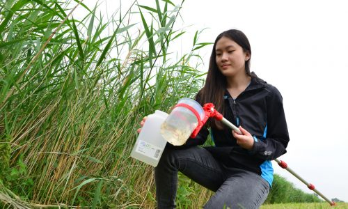 Meisje neemt watermonster