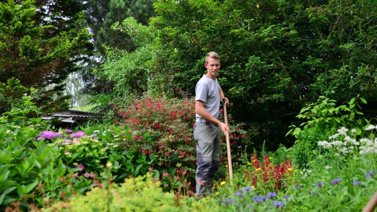 Hovenier bewerkt tuin