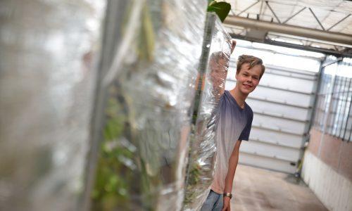 Jongen staat schuin achter kar met planten
