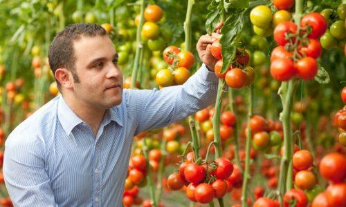 Algemene tuinbouwkennis