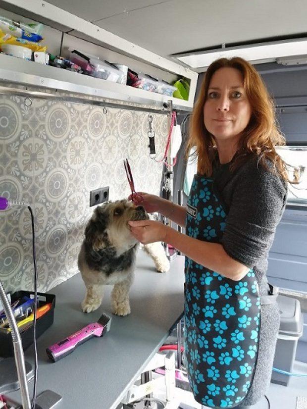 Rebecca knipt hond op tafel - hondentrimsalon