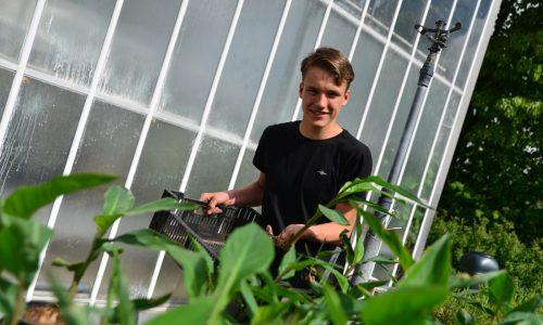 leerling bij de planten